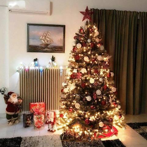 """Αποτέλεσμα εικόνας για χριστουγεννιάτικα δέντρα"""""""
